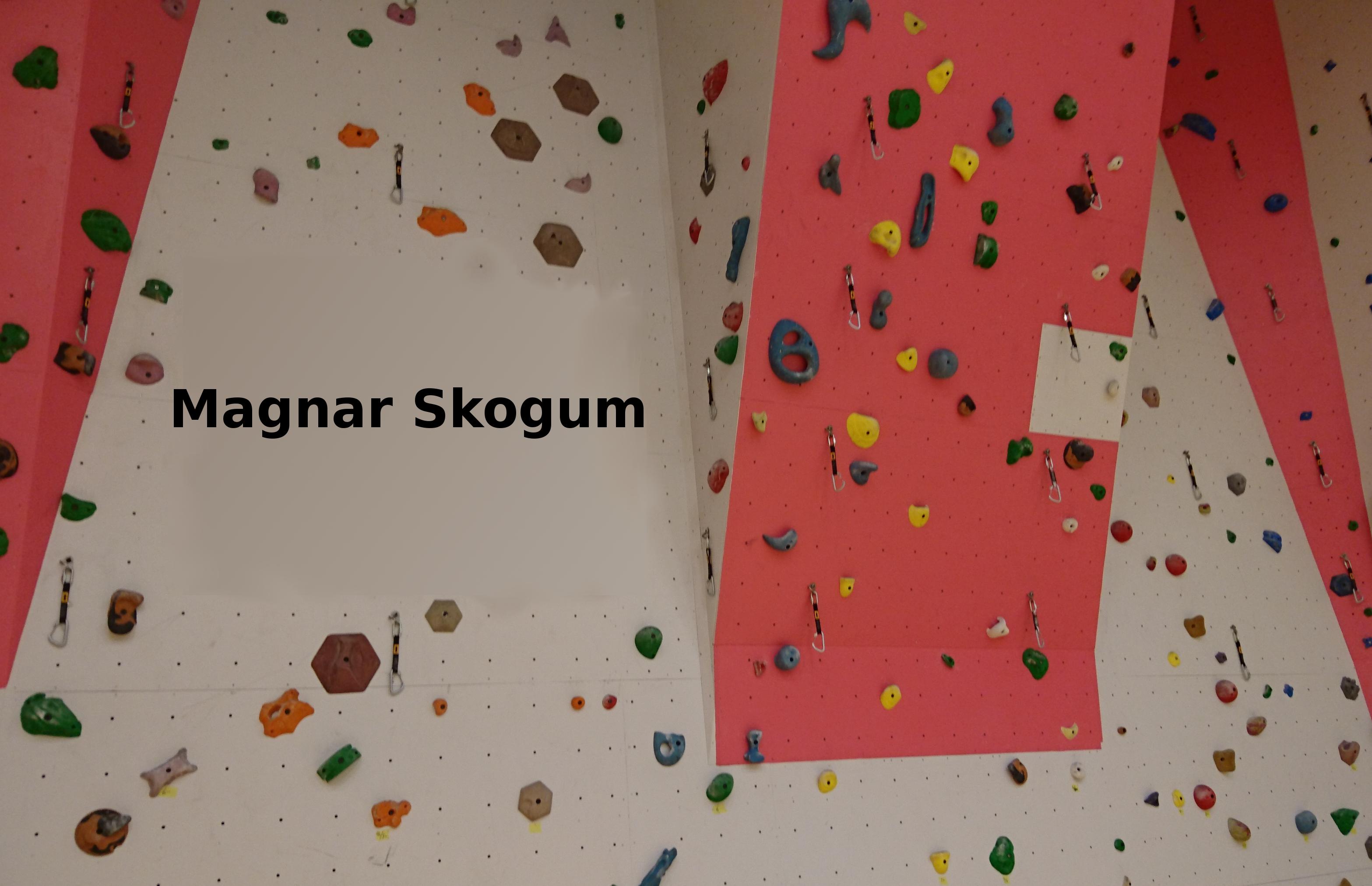 magnar_skogum